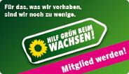 hilf_gruen_bh_184_106